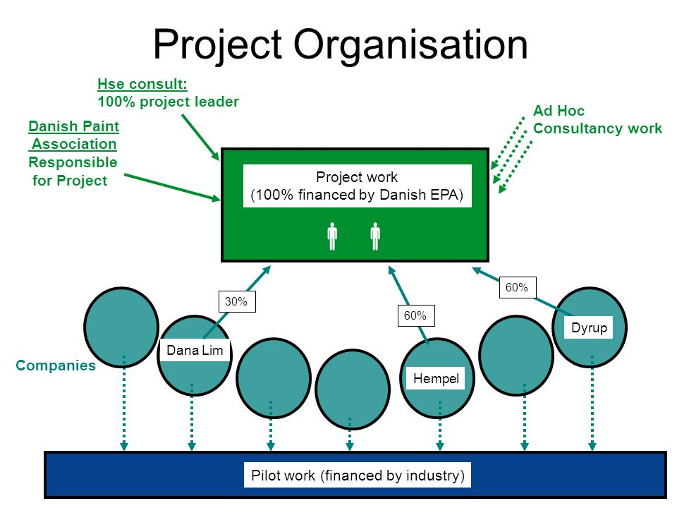 Project Organisation   Hse consult: 100% project leader Ad Hoc