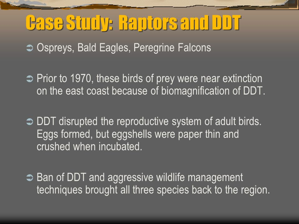Case Study: Raptors and DDT