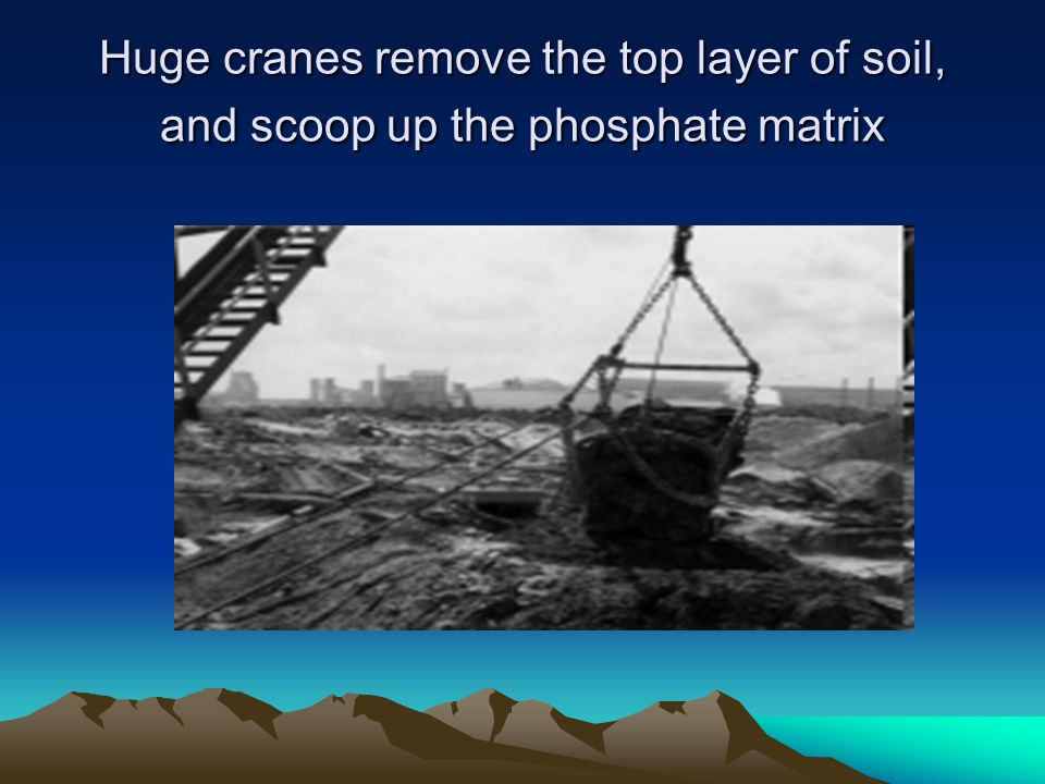 Huge cranes remove the top layer of soil, and scoop up the phosphate matrix
