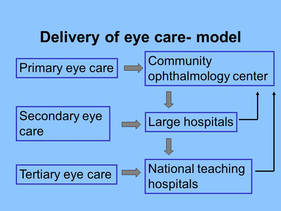 Delivery of eye care- model