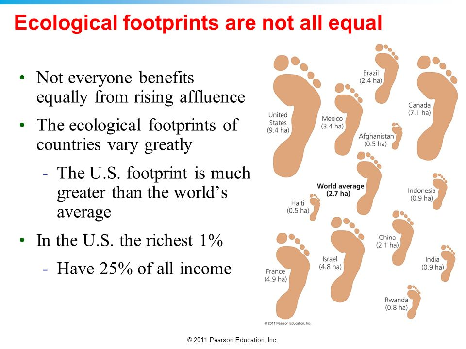 Ecological footprints are not all equal