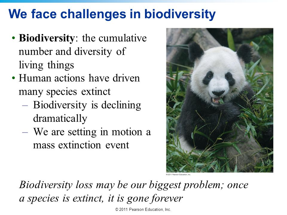We face challenges in biodiversity
