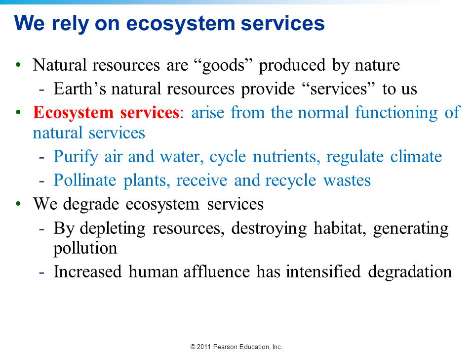 We rely on ecosystem services