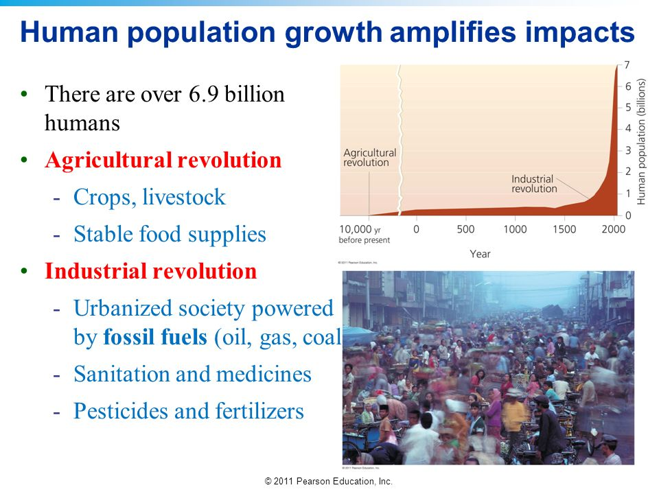 Human population growth amplifies impacts