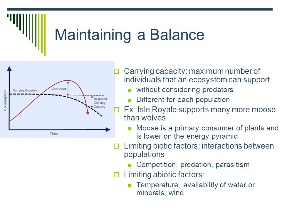 Maintaining a Balance Carrying capacity: maximum number of individuals that an ecosystem can support.