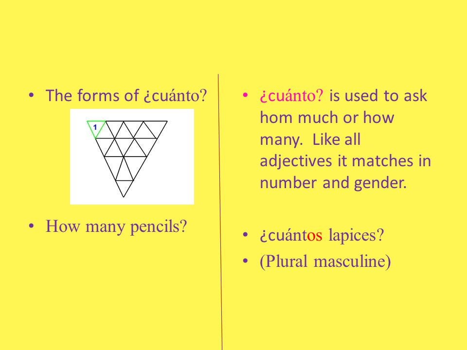 The forms of ¿cuánto How many pencils ¿cuánto is used to ask hom much or how many. Like all adjectives it matches in number and gender.