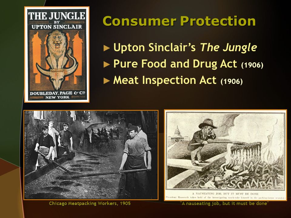 Consumer Protection Upton Sinclair's The Jungle