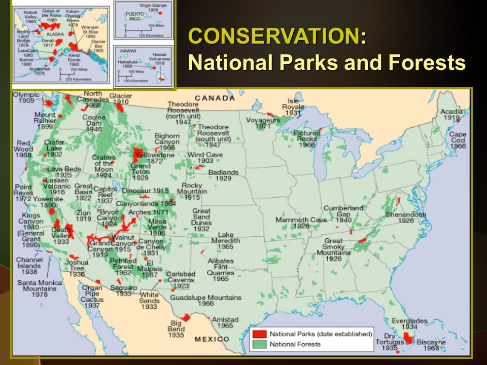 CONSERVATION: National Parks and Forests
