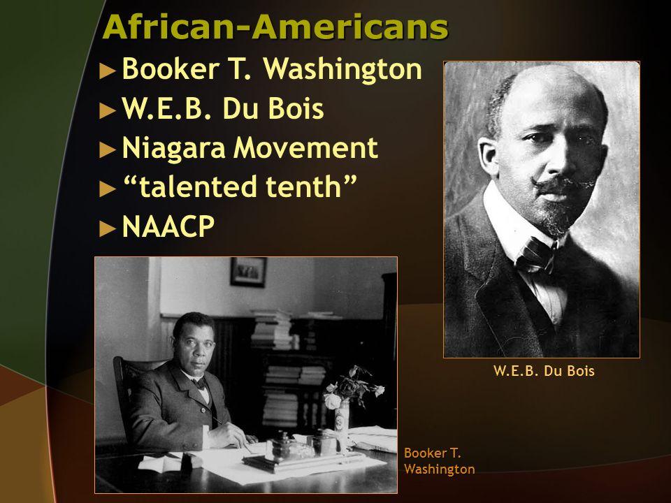 African-Americans Booker T. Washington W.E.B. Du Bois Niagara Movement