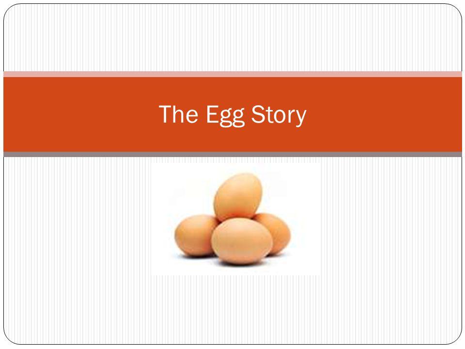 The Egg Story