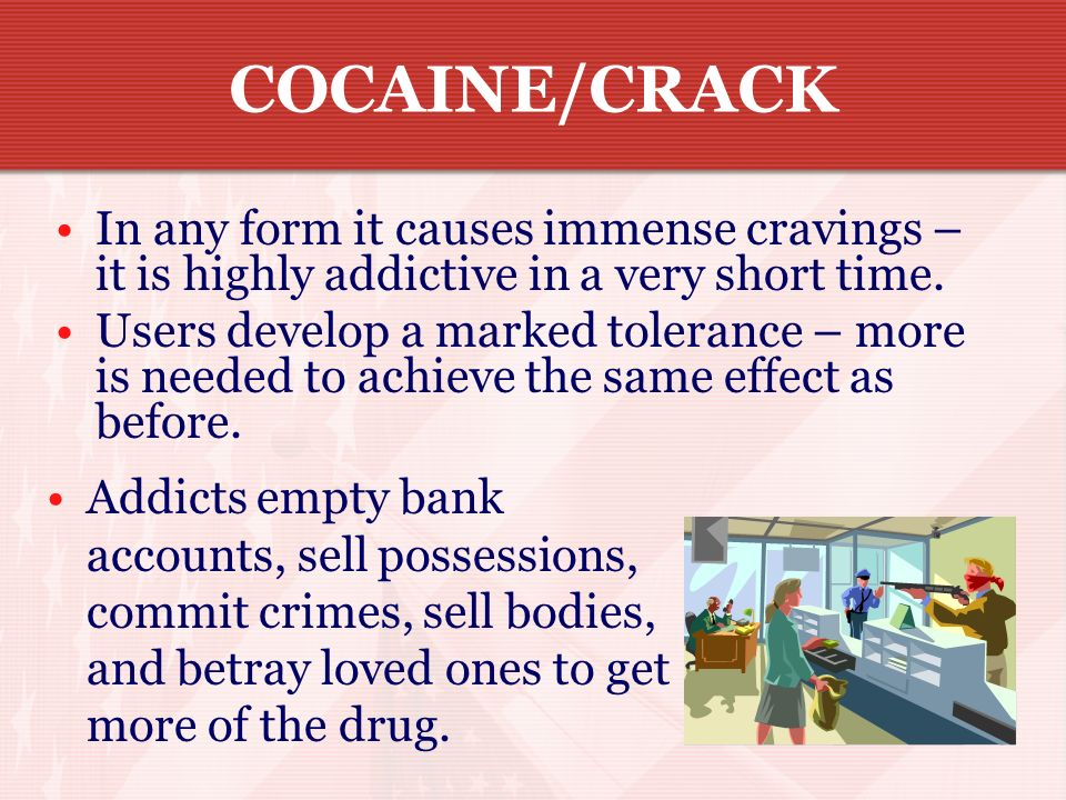 COCAINE/CRACKIn any form it causes immense cravings – it is highly addictive in a very short time.