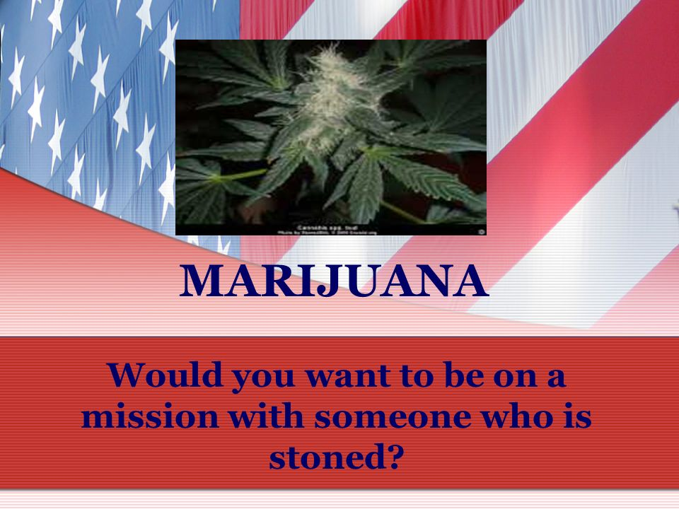 Would you want to be on a mission with someone who is stoned