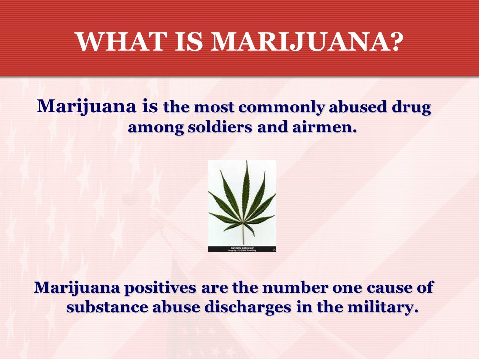 Marijuana is the most commonly abused drug among soldiers and airmen.