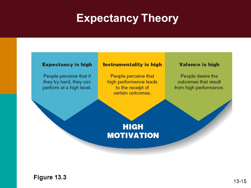 Expectancy Theory Figure 13.3