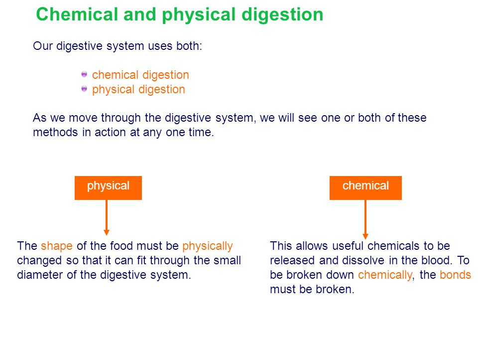 Chemical and physical digestion