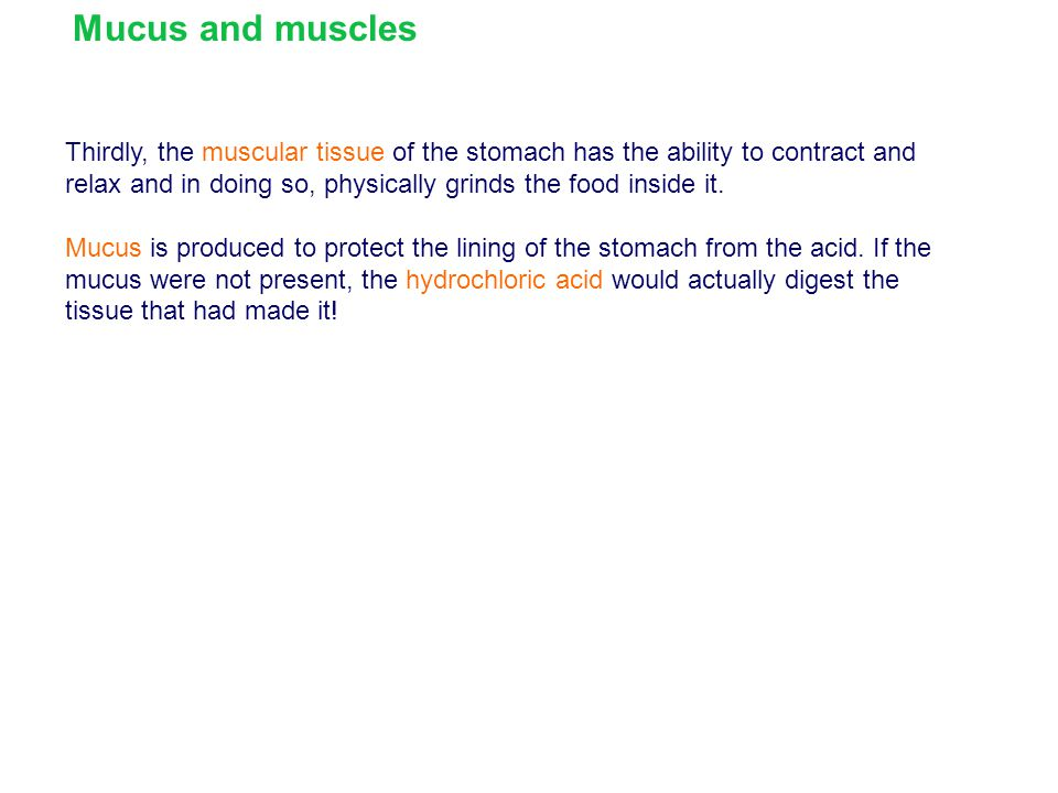 Mucus and muscles