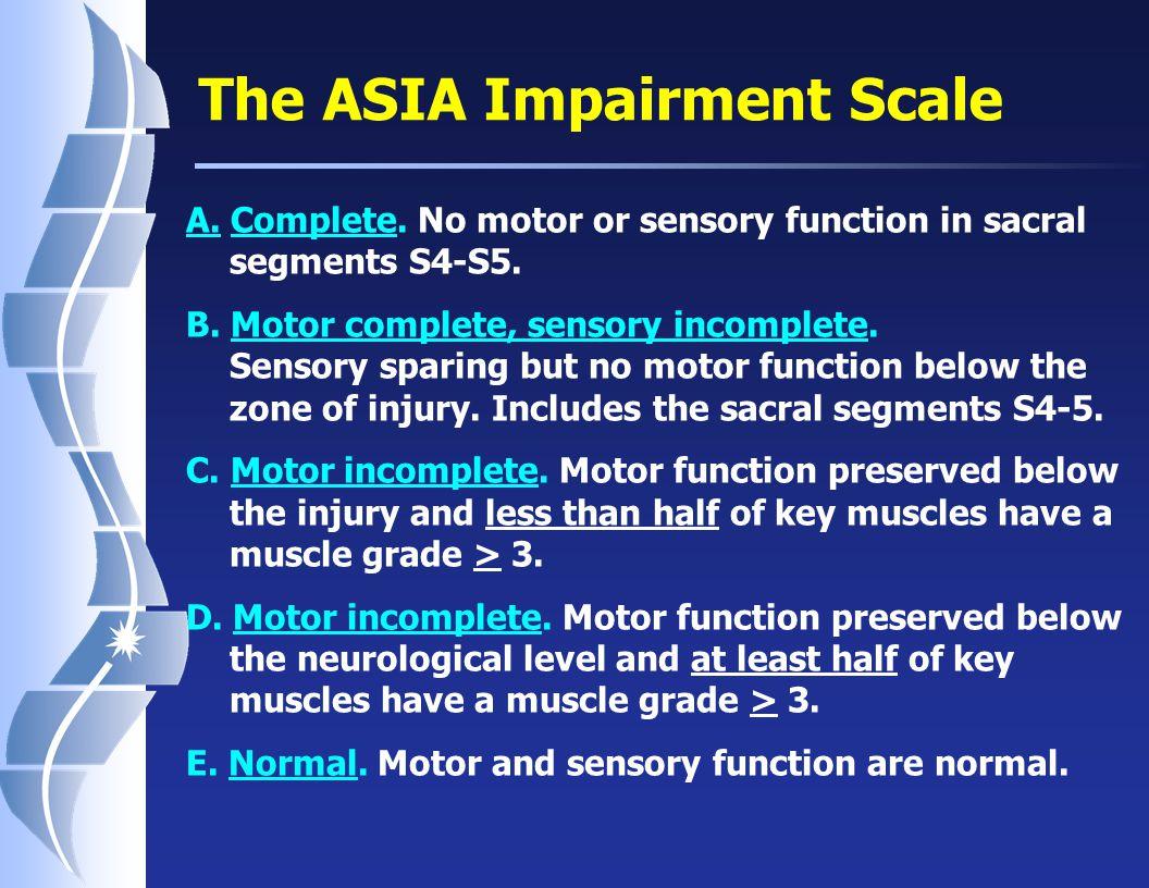 The ASIA Impairment Scale