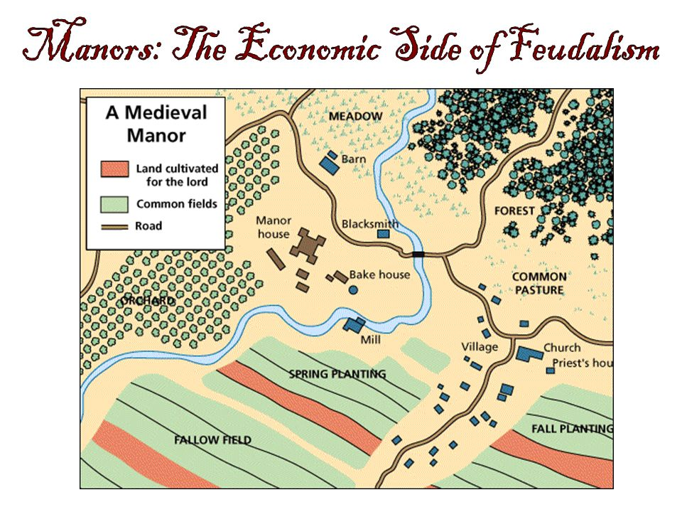 Manors: The Economic Side of Feudalism