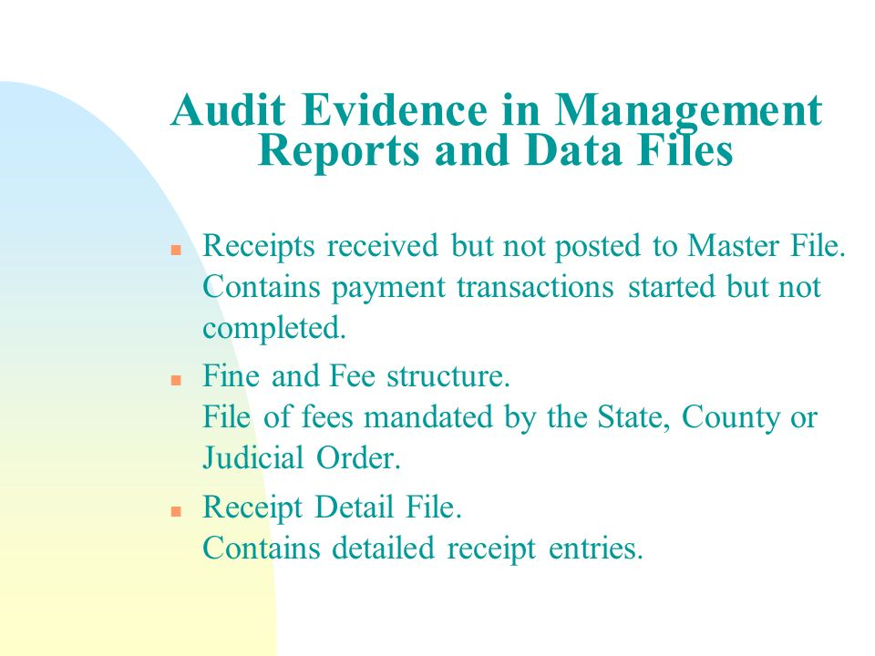 Audit Evidence in Management Reports and Data Files