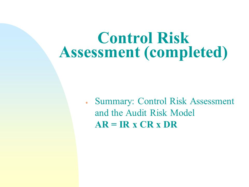 Control Risk Assessment (completed)