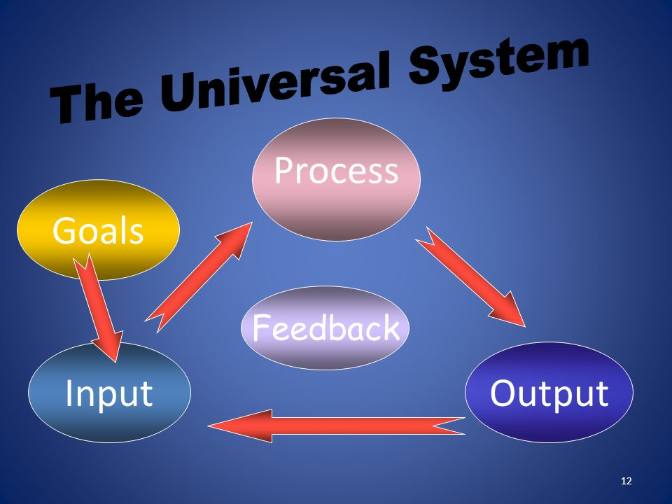 The Universal System Process Goals Feedback Input Output