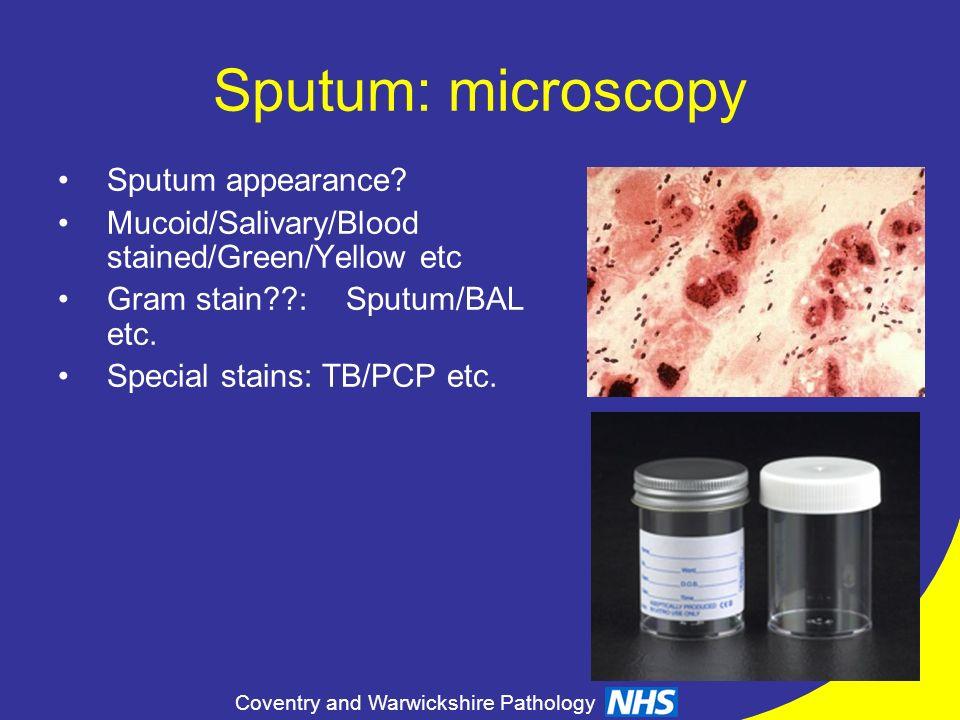 Sputum: microscopy Sputum appearance