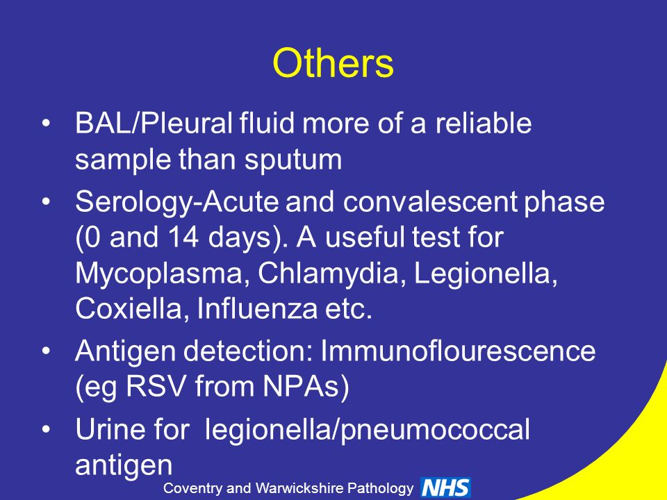 Others BAL/Pleural fluid more of a reliable sample than sputum