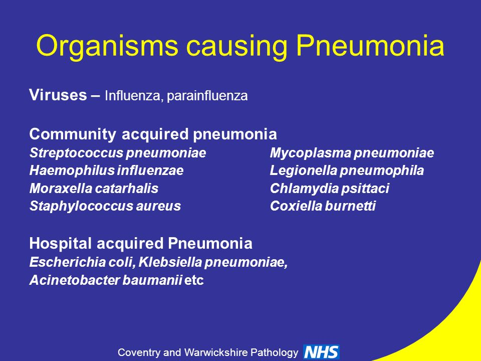 Organisms causing Pneumonia