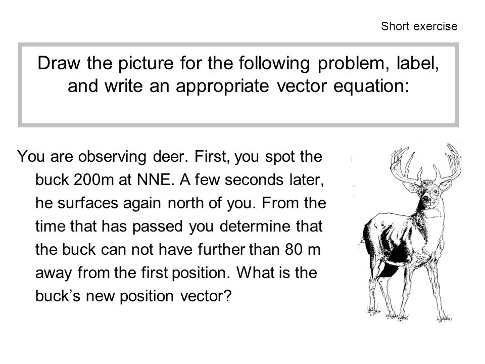 Short exercise Draw the picture for the following problem, label, and write an appropriate vector equation: