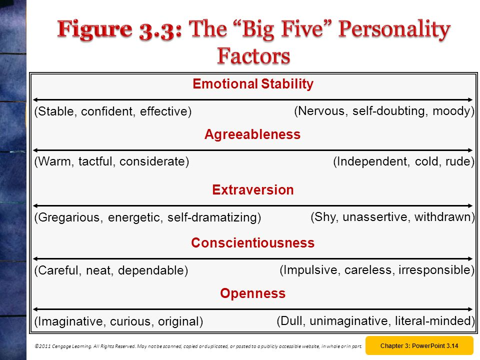 Figure 3.3: The Big Five Personality Factors