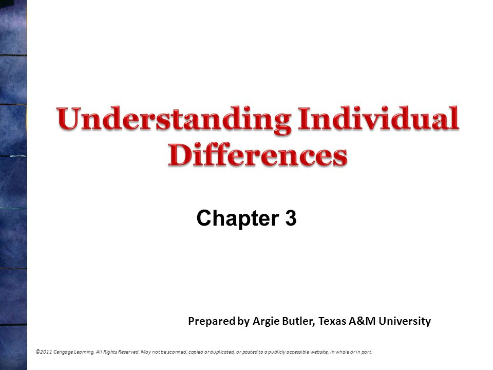 measuring and interpreting individual differences Measuring individual and cultural differences in implicit trait theories a timothy church, fernando a ortiz, marcia s katigbak, tatyana v avdeyeva, and.