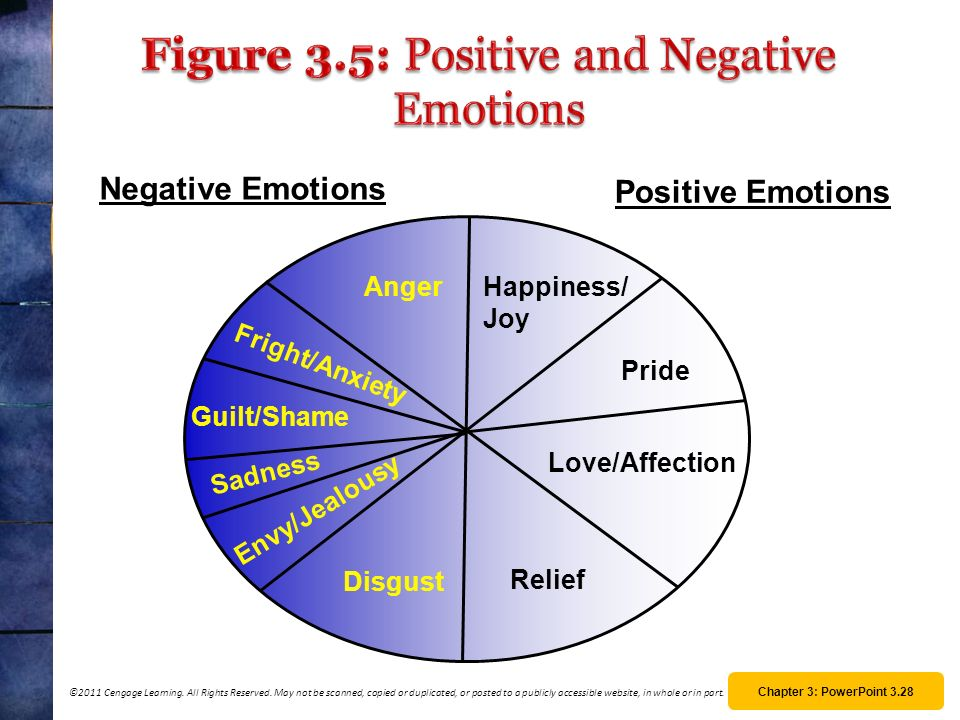 Figure 3.5: Positive and Negative Emotions