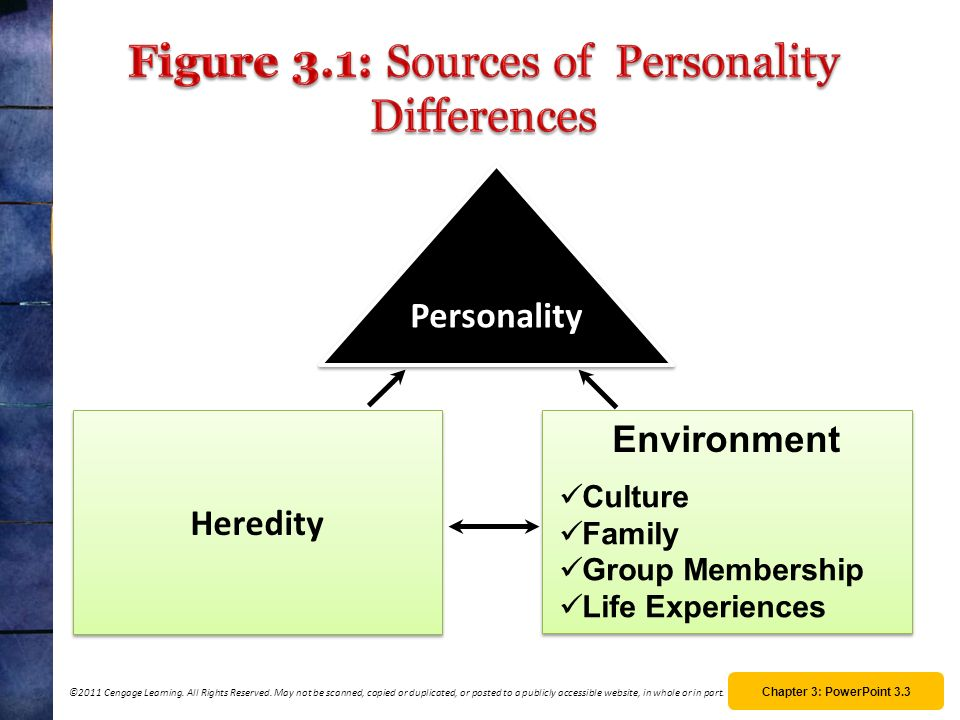 Figure 3.1: Sources of Personality Differences