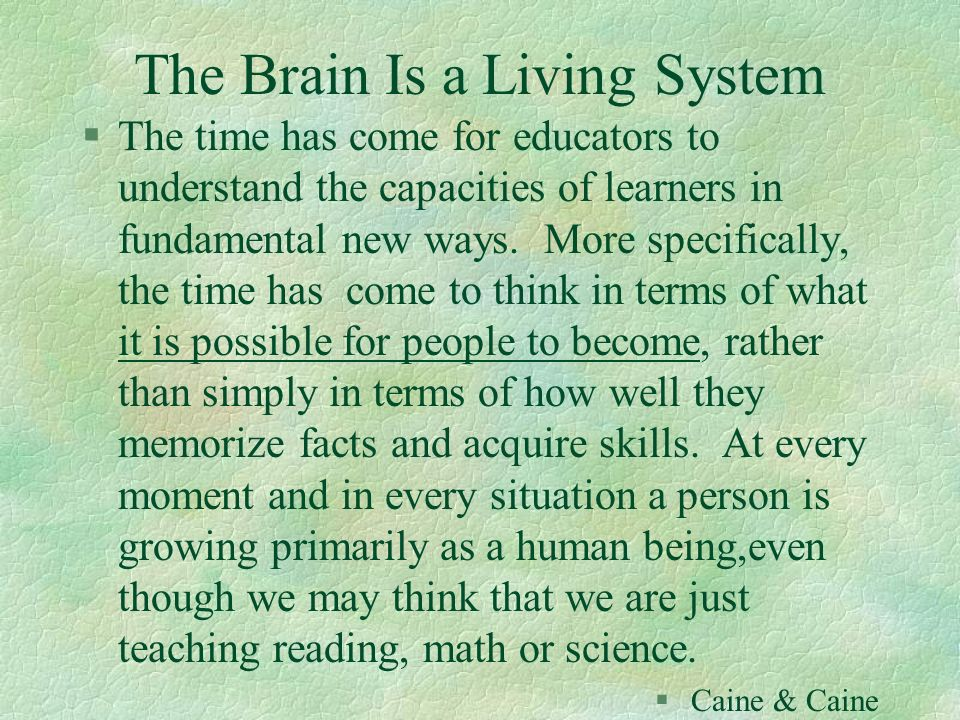 The Brain Is a Living System