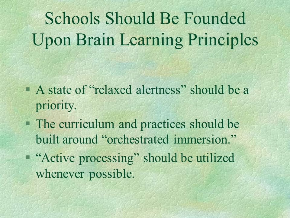 Schools Should Be Founded Upon Brain Learning Principles