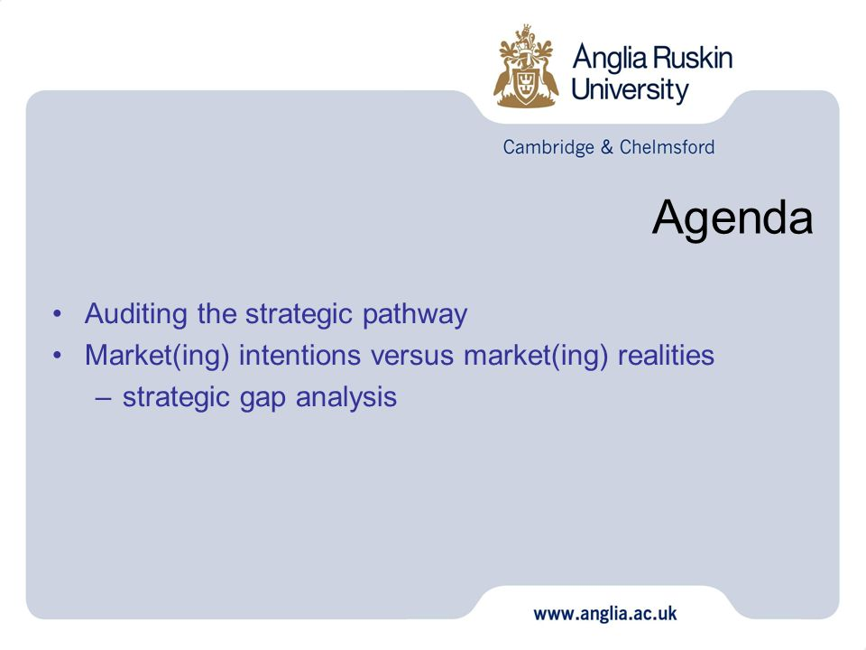 Agenda Auditing the strategic pathway