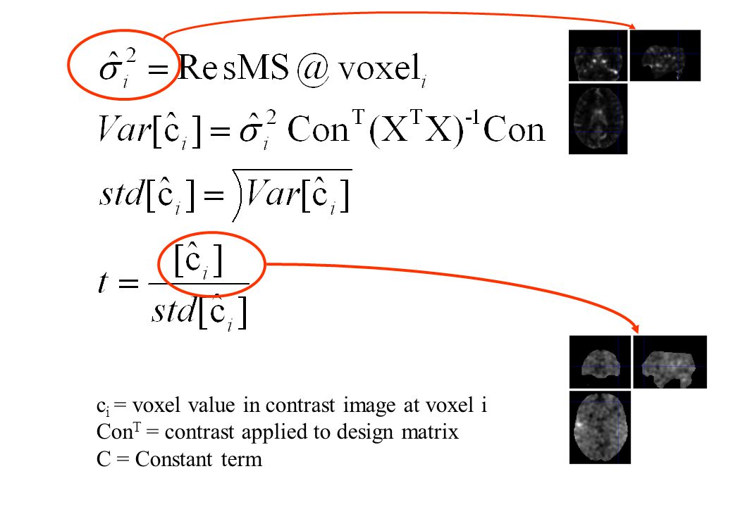 ci = voxel value in contrast image at voxel i