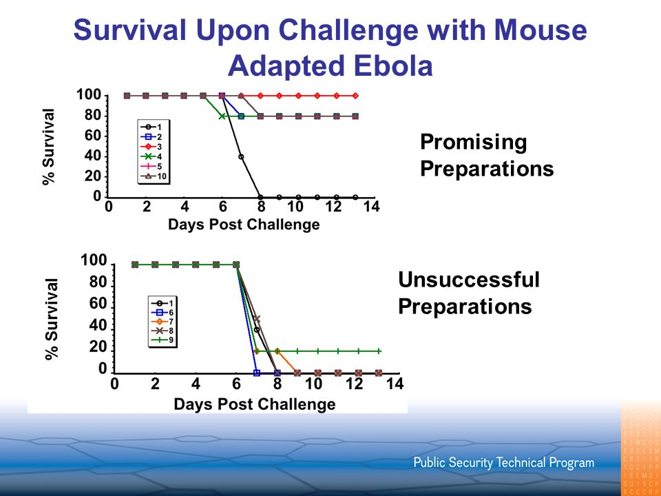 Survival Upon Challenge with Mouse Adapted Ebola