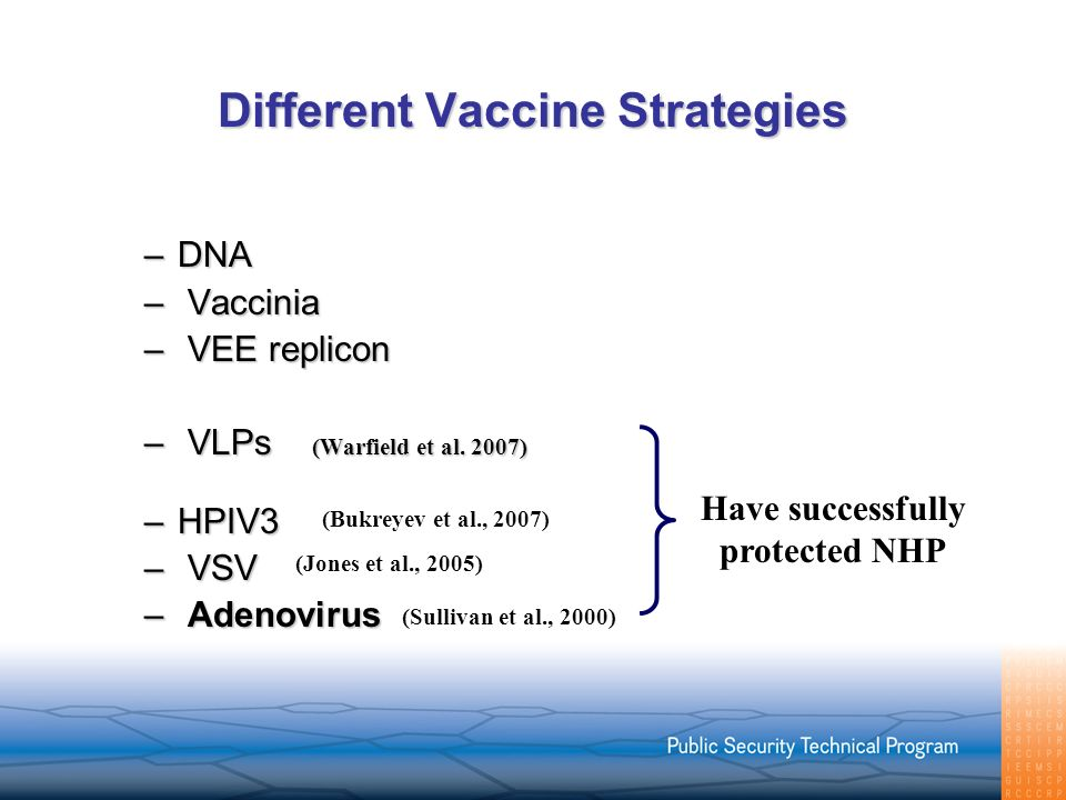 Different Vaccine Strategies