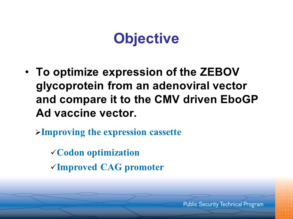 Objective To optimize expression of the ZEBOV glycoprotein from an adenoviral vector and compare it to the CMV driven EboGP Ad vaccine vector.