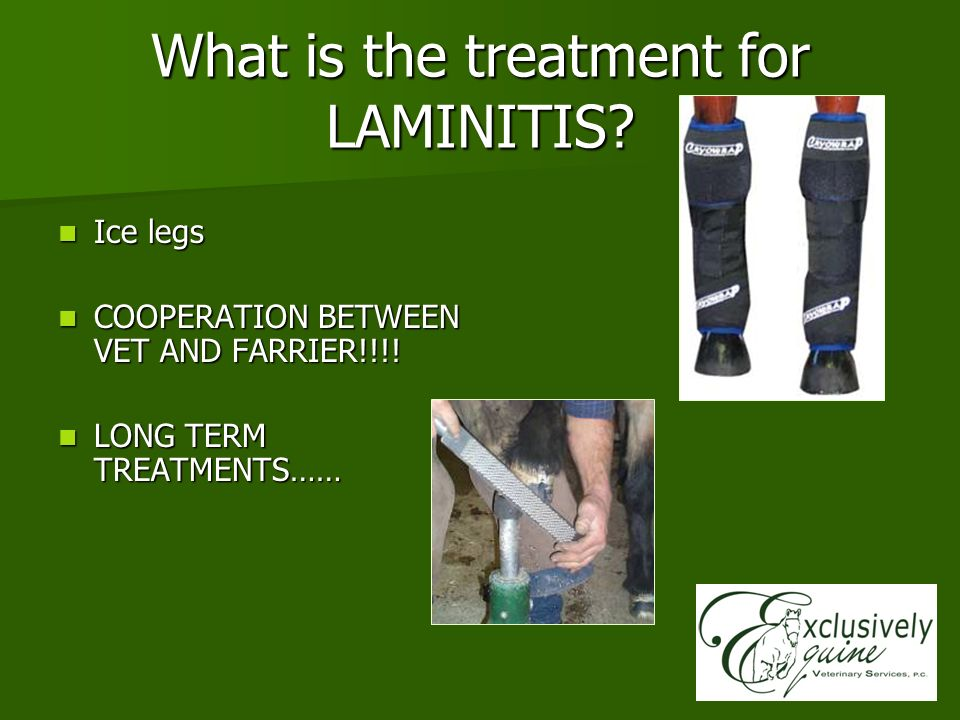 What is the treatment for LAMINITIS