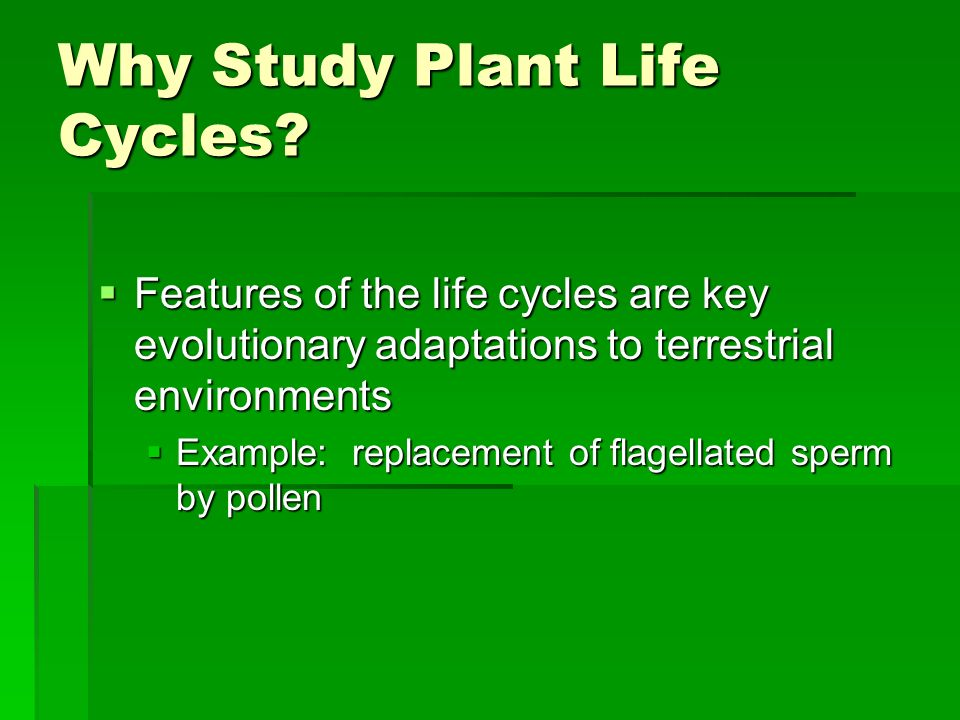 Why Study Plant Life Cycles