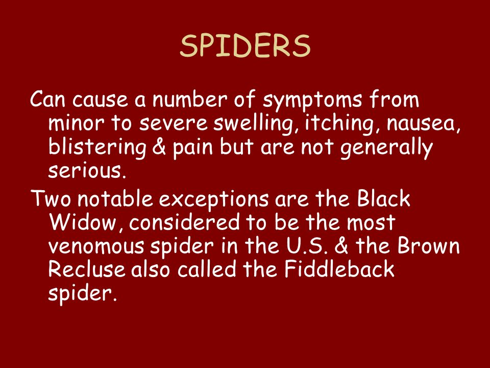 SPIDERS Can cause a number of symptoms from minor to severe swelling, itching, nausea, blistering & pain but are not generally serious.