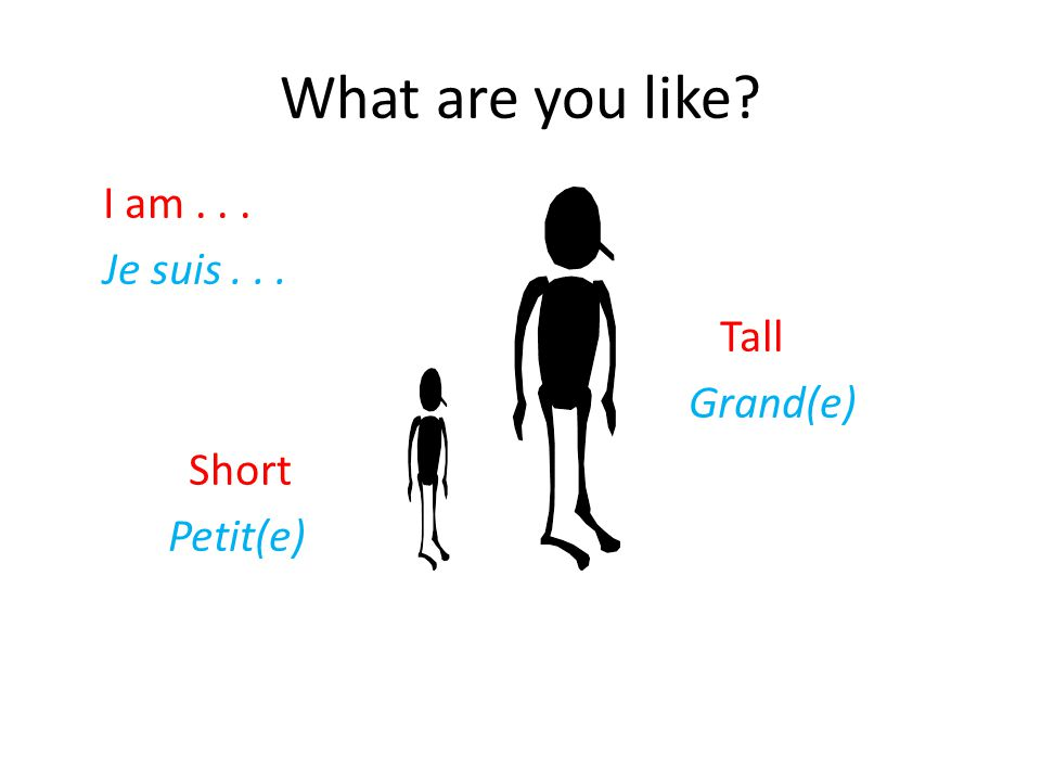 What are you like Je suis . . . Tall Grand(e) Short Petit(e)