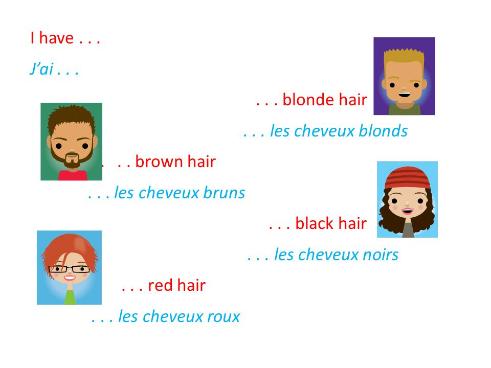 I have. J'ai. blonde hair. les cheveux blonds. brown hair
