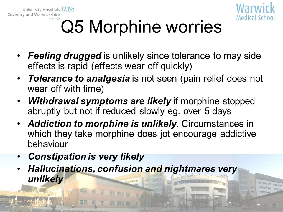 Q5 Morphine worries Feeling drugged is unlikely since tolerance to may side effects is rapid (effects wear off quickly)