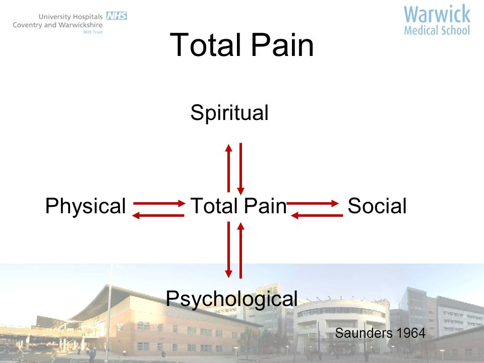 Total Pain Spiritual Physical Total Pain Social Psychological