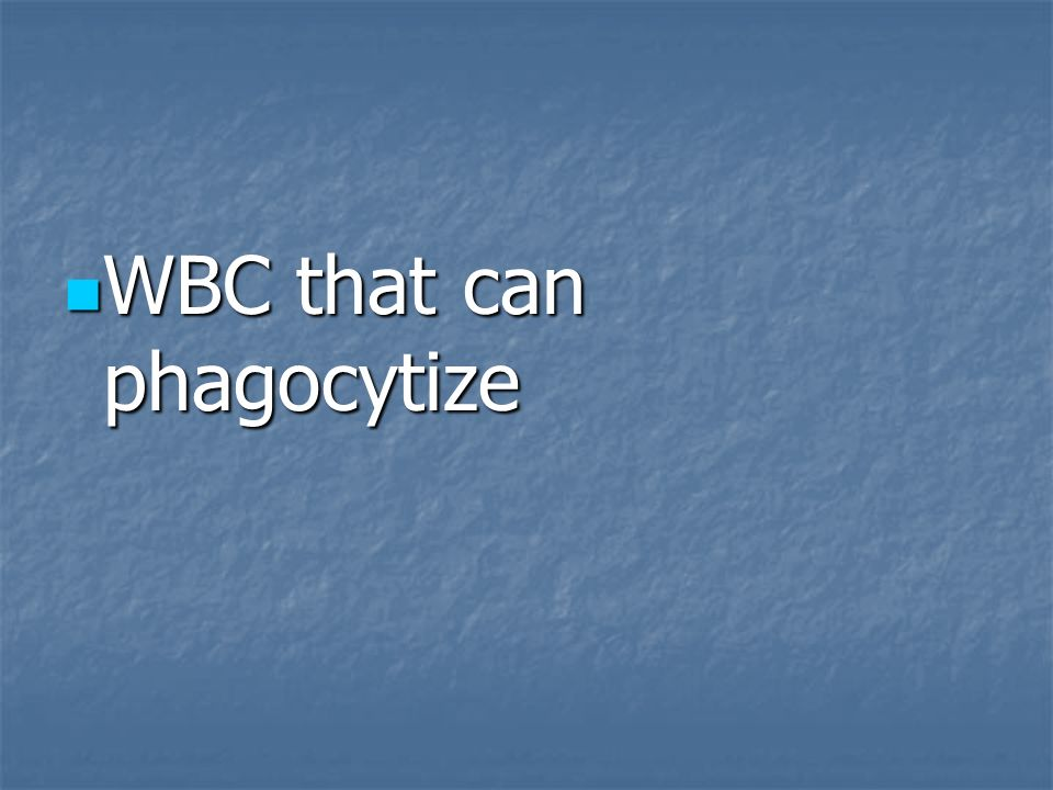 WBC that can phagocytize