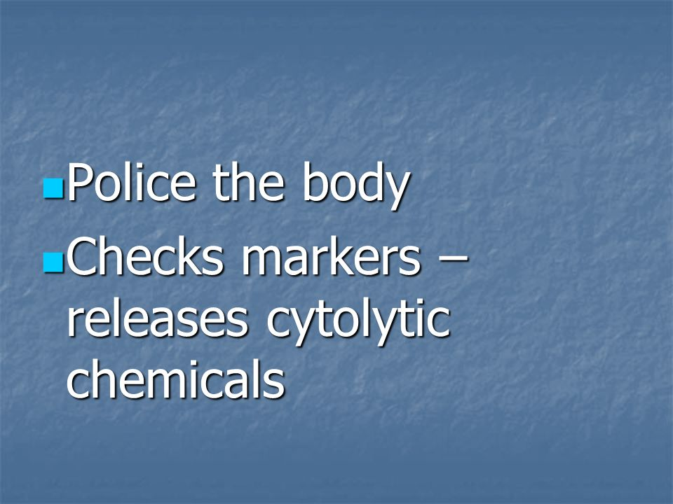 Police the body Checks markers – releases cytolytic chemicals