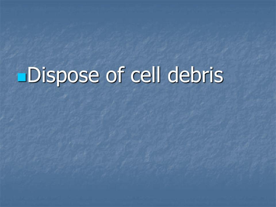 Dispose of cell debris